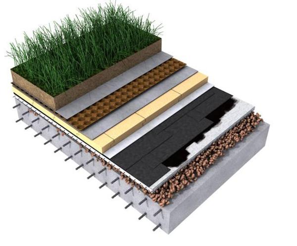 Grafika przedstawia system dachu zielonego odwróconego od TECHNONICOL.